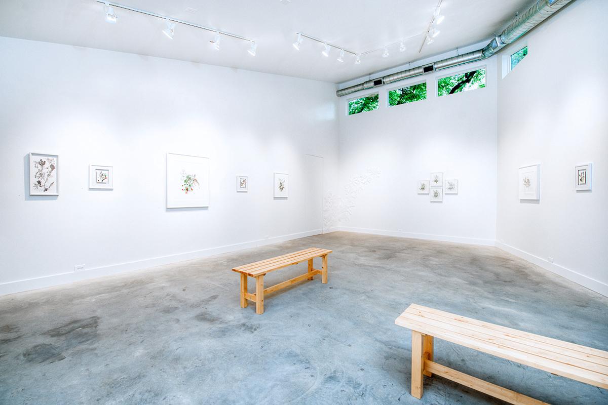 Beyond the Bio: grayDUCK Gallery